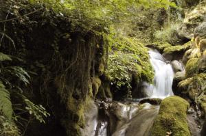 Θεσσαλονίκη: Παρέμβαση εισαγγελέα για τον καθαρισμό του ρέματος Δενδροποτάμου