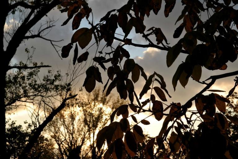 Καιρός: Όμορφο Σάββατο! Αναλυτική πρόγνωση για όλη τη χώρα | Newsit.gr