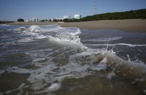Φρίκη στις ακτές της Ιαπωνίας – Ξεβράζονται πτώματα σε πλήρη αποσύνθεση
