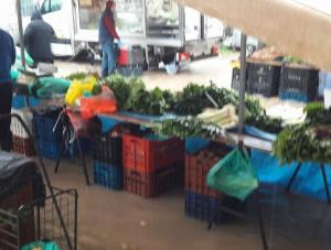 Εύβοια: Πλημμύρες και διακοπές ρεύματος στη Χαλκίδα από σφοδρή καταιγίδα – Χαμός σε λαϊκή αγορά [vids]