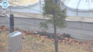 Αποκαλύψεις «φωτιά» για τον λιποτάκτη από τη Βόρεια Κορέα