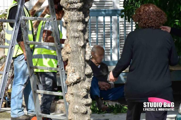 Ναύπλιο: Προσπάθησε να κλαδέψει το δέντρο και παραλίγο να σκοτωθεί! [pics] | Newsit.gr