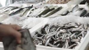 Το σποτ της κυβέρνησης για το κοινωνικό μέρισμα – Τα ψάρια, τα πούρα και… τα λεφτά για την τυρόπιτα