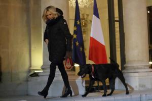 Μπριζίτ Τρονιέ: Βραδινή βόλτα με τον… άτακτο Νέμο! [pics]