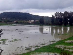 Κακοκαιρία: Κλειστά αύριο τα σχολεία σε Ζάκυνθο, Κεφαλονιά και Ιθάκη