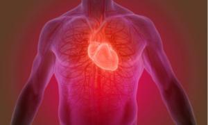 Φερριτίνη: Τι δείχνουν οι υψηλές και τι οι χαμηλές τιμές στο αίμα