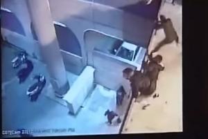 """ΑΕΛ – ΑΠΟΕΛ: Έτσι μπήκαν τα """"πυρομαχικά"""" στο Τσίρειο! Αποκαλυπτικό βίντεο"""