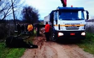 Κομοτηνή: Επιχείρηση διάσωσης αγελάδας που έπεσε σε χείμαρρο [vid]