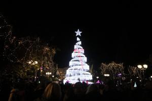 Και επίσημα σε Χριστουγεννιάτικο κλίμα η Αθήνα – Φωταγωγήθηκε το δέντρο [pics]