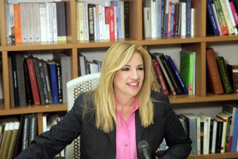 Δηλώσεις πόθεν έσχες: Τι δήλωσε η Φώφη Γεννηματά | Newsit.gr