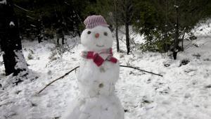 Χειμερινό Ηλιοστάσιο: Πότε μπαίνει επίσημα ο Χειμώνας
