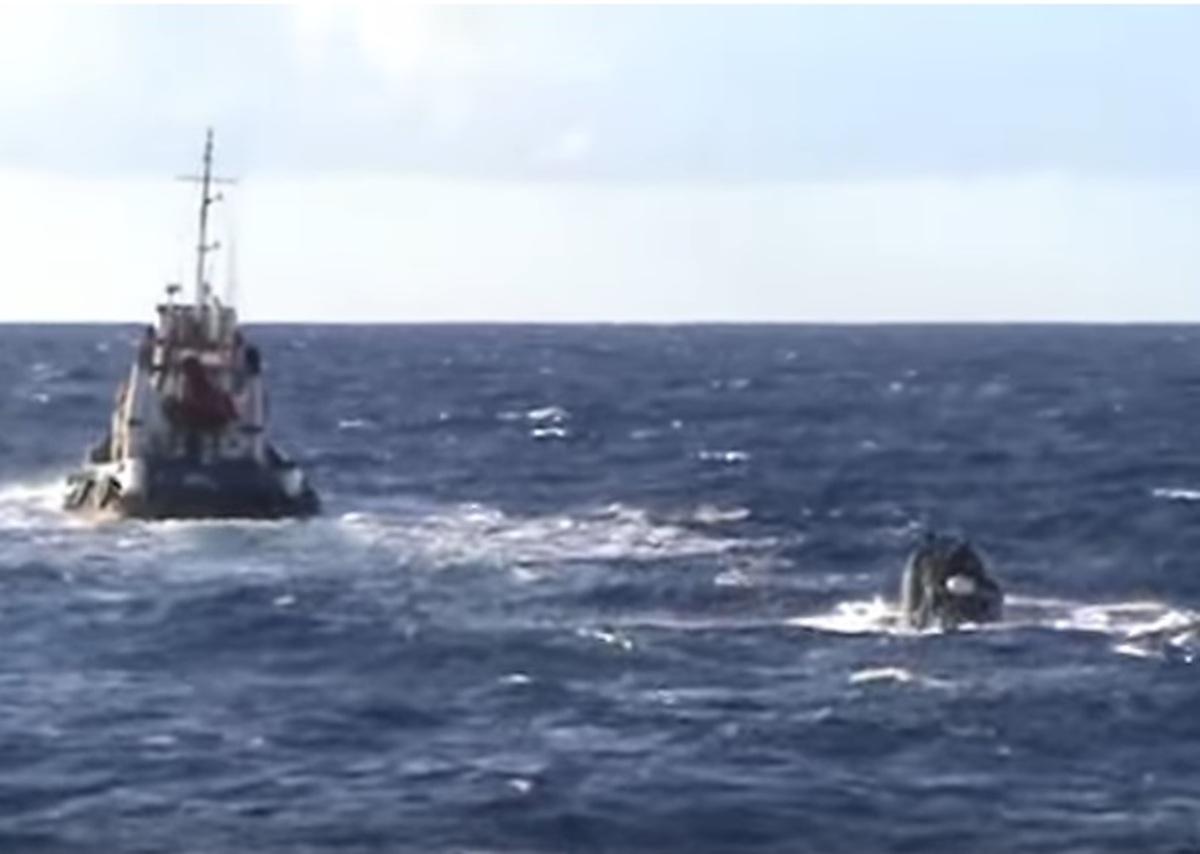 Βίντεο ντοκουμέντο από την εισβολή των λιμενικών στο πλοίο με τους 6,5 τόνους χασίς! [vid] | Newsit.gr