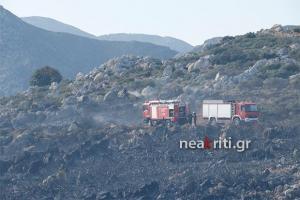 Κρήτη: Φωτιά κοντά στο δάσος της Κέρης – Επί τόπου δυνάμεις της πυροσβεστικής [vid]