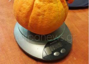 Χαμός στα Χανιά με πορτοκάλι γίγας! [pics]
