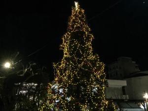 Καρπενήσι: Το χριστουγεννιάτικο δέντρο που διχάζει ντόπιους και τουρίστες – Η πόλη σε ρυθμούς εορταστικούς [vid]