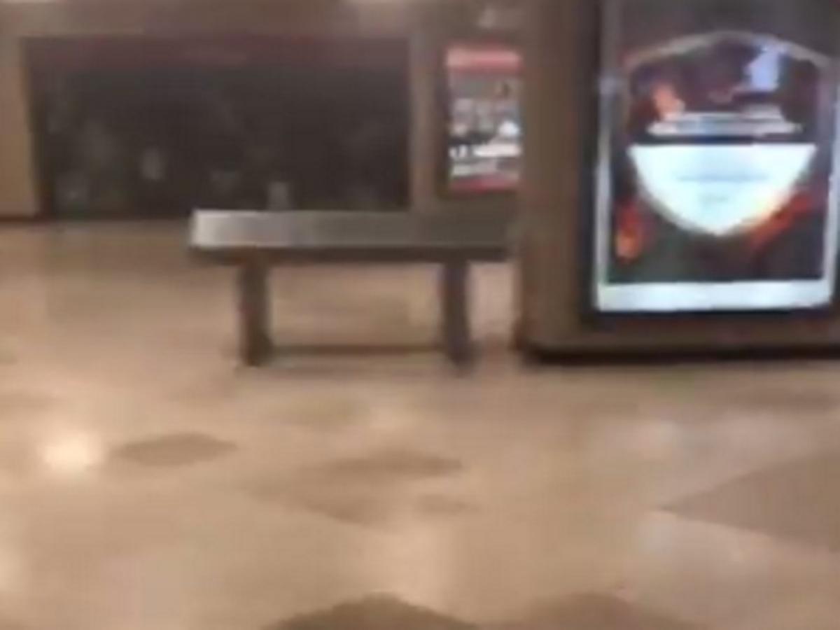 Βρυξέλλες: Τα πρώτα λεπτά μετά την έκρηξη στον σιδηροδρομικό σταθμό! [vid]