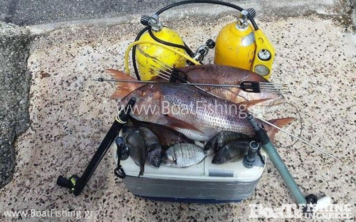 ΦΩΤΟ από boatfishing.gr
