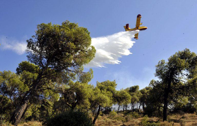 Ζάκυνθος: Σε εξέλιξη δασική φωτιά στην περιοχή Αγαλας