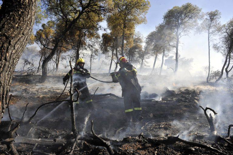 Πάτρα: Συνεχείς αναζωπυρώσεις της φωτιάς – Δύσκολη νύχτα βλέπουν οι πυροσβέστες!