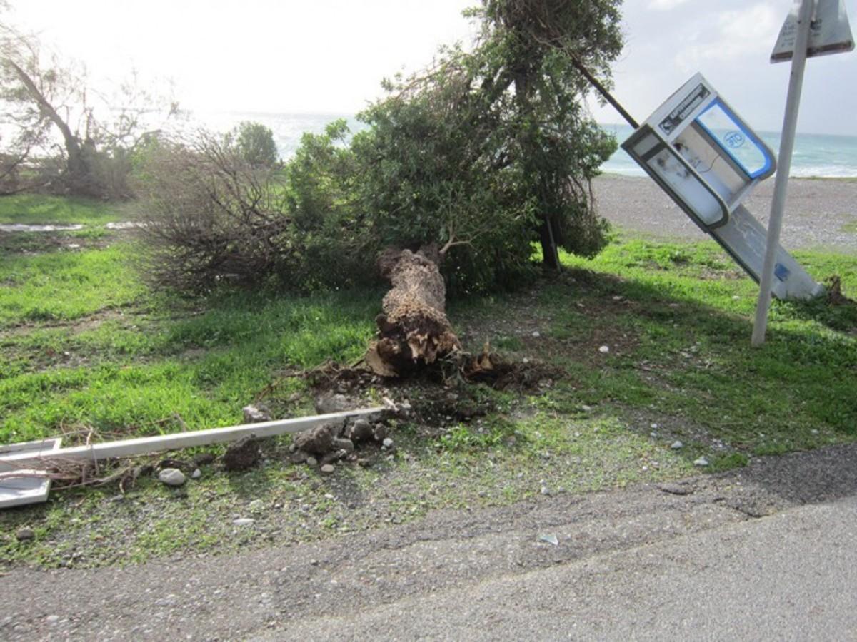 ΦΩΤΟ από rodiaki.gr