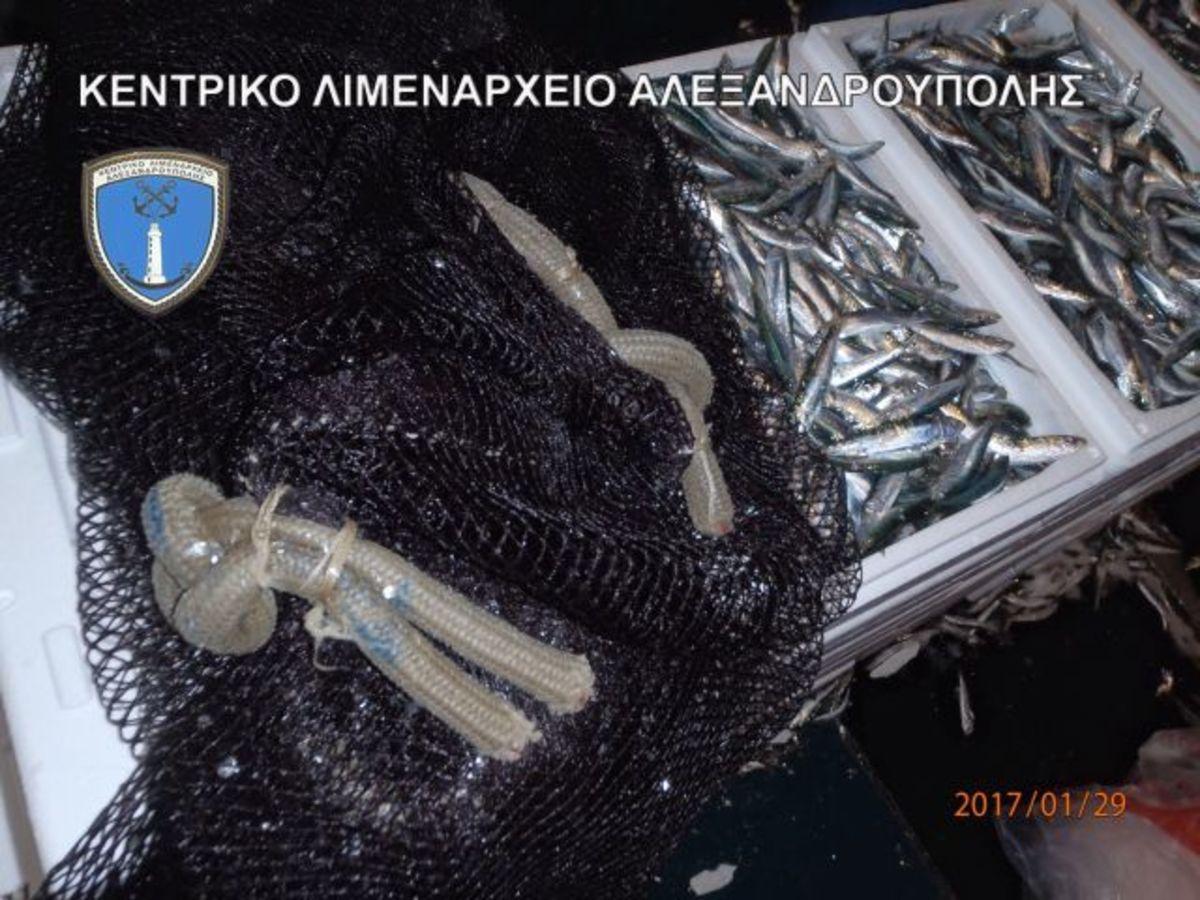"""Ξάνθη: Η ψαριά των 3 τόνων έκρυβε """"ένοχα"""" μυστικά – Κατασχέθηκαν γαύροι και σαρδέλες [pics]"""