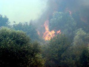 Πυρκαγιά στην Αλόννησο