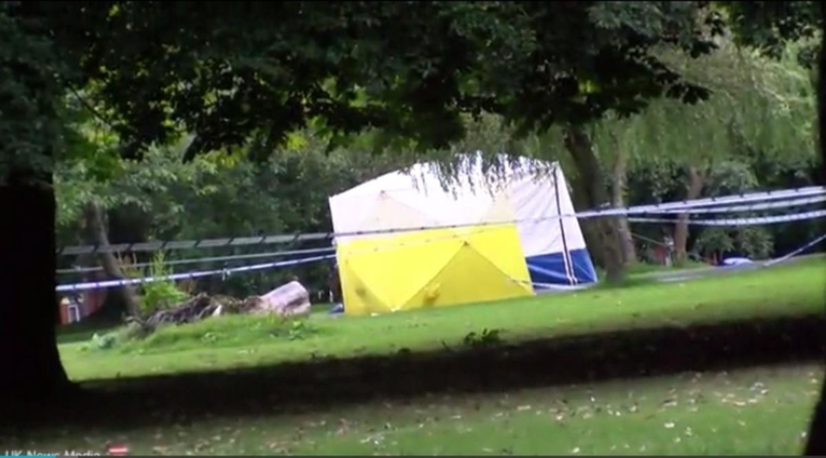 Εφιαλτικές ώρες για 12χρονη – Έπεσε θύμα άγριου βιασμού σε πάρκο