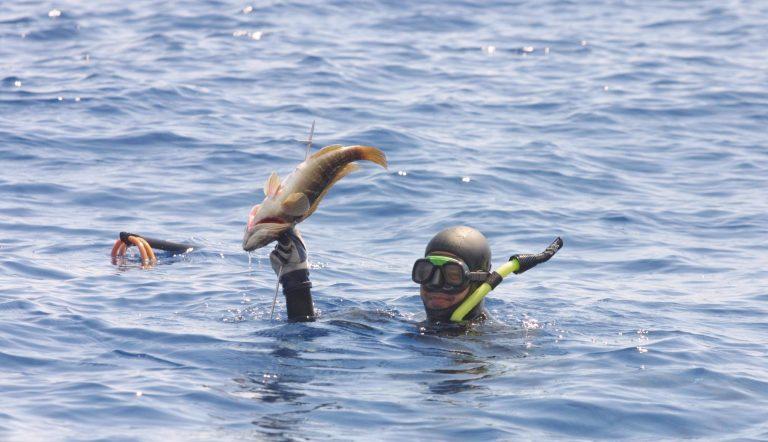 Η υποξία κατά τη διάρκεια της βουτιάς μπορεί να φέρει σε κινδυνο τη ζωή του ψαροντουφεκά!