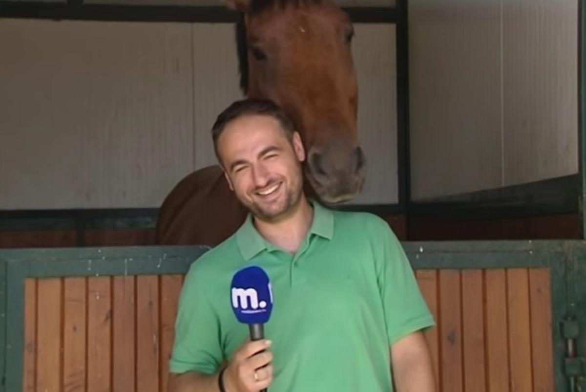 Όταν ένα άλογο ερωτεύεται… έναν δημοσιογράφο – ΒΙΝΤΕΟ
