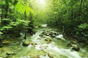 Η προστασία του πλανήτη κοστίζει 76 δισ. δολάρια