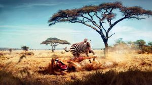 Eχουμε εισέλθει στον «έκτο κύκλο εξαφάνισης» των ειδών