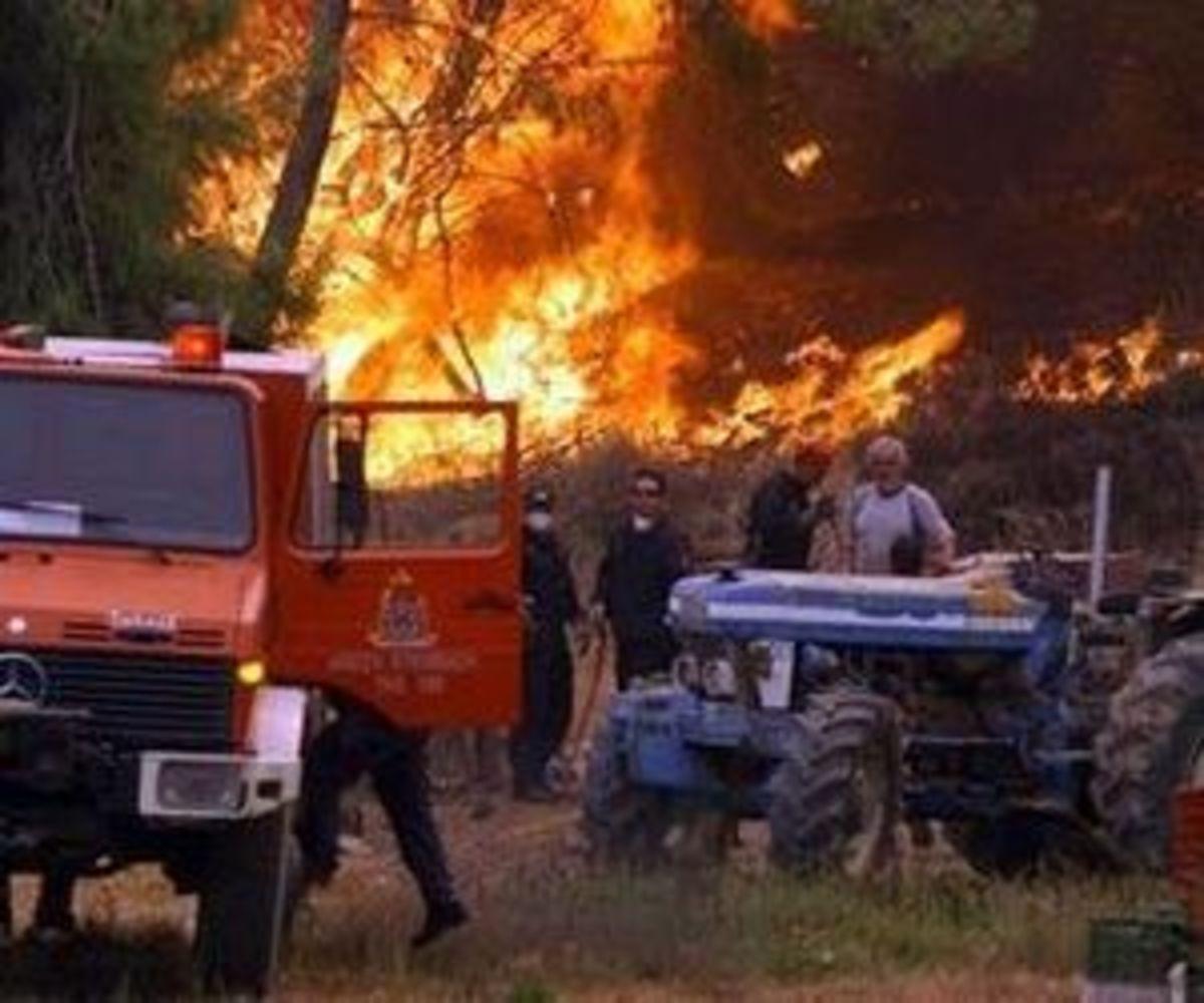 Υπό έλεγχο η φωτιά στην Έυβοια