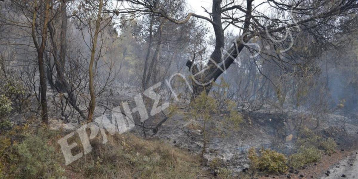 ΦΩΤΟ από ermisnews.gr