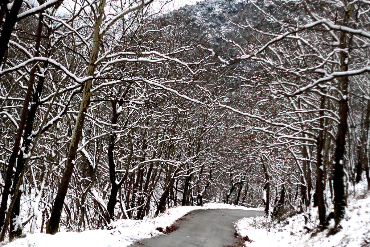 Καιρός: Ο χειμώνας είναι εδώ! Αναλυτική πρόγνωση για το Σαββατοκύριακο