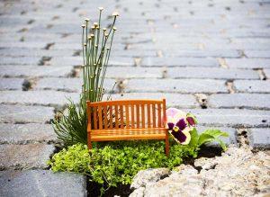 Μικροσκοπικοί «κήποι» στις λακκούβες των δρόμων!