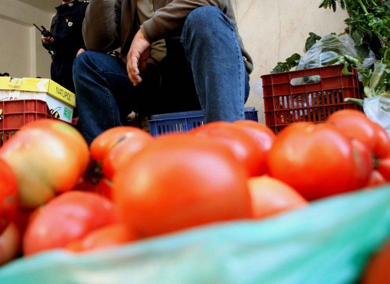 Γλιτώσαμε από ντομάτες «ποτισμένες» με φυτοφάρμακα – Κατάσχεση 4,6 τόνων στον Πειραιά