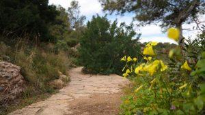 Κρήτη: Τραυματίστηκε τουρίστρια που είχε πάει για πεζοπορία