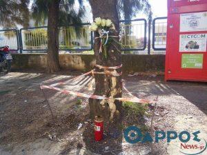 Καλαμάτα: Σκοτώθηκε ανήλικος μπροστά στον αδερφό του – Τροχαίο δυστύχημα με μηχανή [pics]