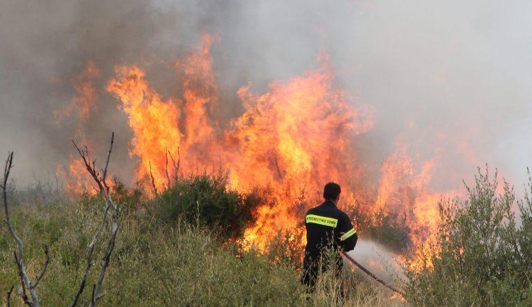 Πυρκαγιά στον Πυργετό Λάρισας