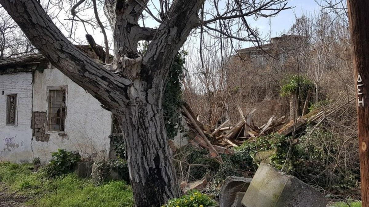 ΦΩΤΟ από το trikalavoice.gr