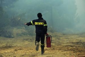 Κυπαρισσία: Φωτιά τώρα σε δάσος – Εξαιρετικά δύσκολο το έργο της κατάσβεσης!