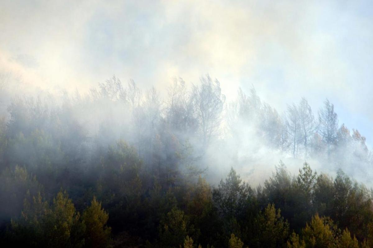 Φωτιές: Αυτά είναι τώρα τα πύρινα μέτωπα σε όλη την Ελλάδα