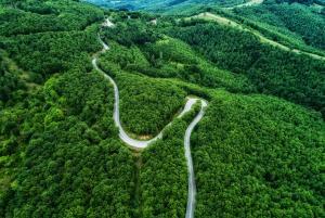 Δασικοί χάρτες: Στην ολομέλεια του ΣτΕ θα κριθεί η συνταγματικότητα του νόμου