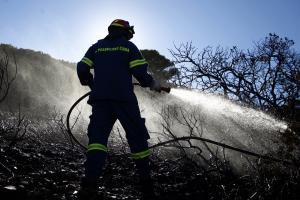 46 πυρκαγιές σε δασικές εκτάσεις το τελευταίο 24ωρο
