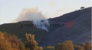 """Φωτιά στην Αχαΐα: """"Μάχη"""" με τις φλόγες για δεύτερη ημέρα"""