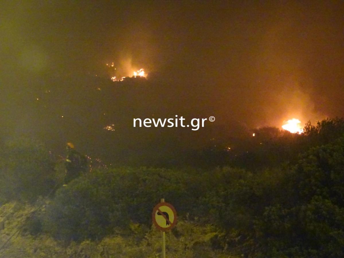 """Φωτιά στα Καλύβια: Ολονύχτια """"μάχη"""" με τις φλόγες! Αγωνία για τους κατοίκους"""