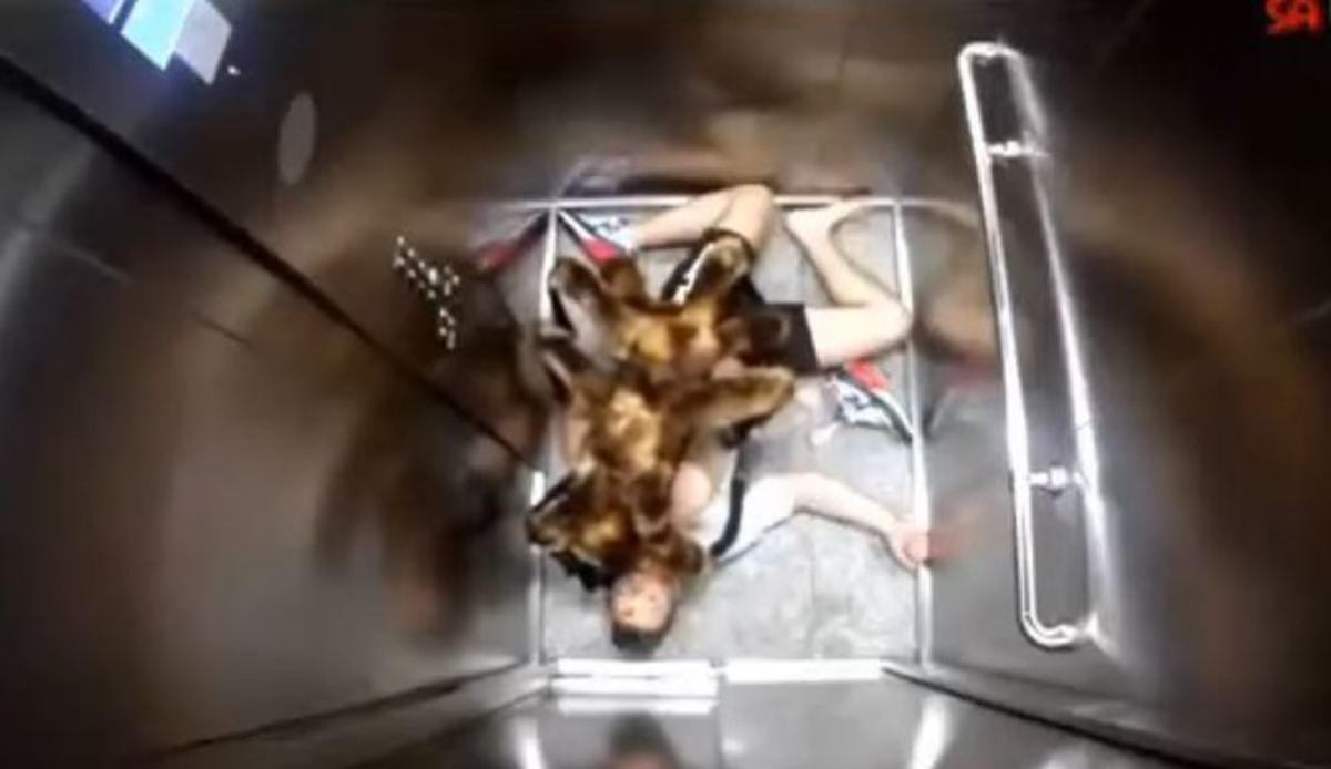 Έντυσε τον σκύλο του με στολή αράχνης και τρόμαξε όλον τον κόσμο! [vid]
