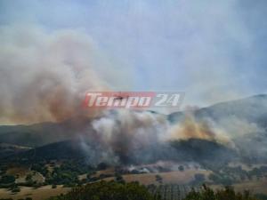 Μεγάλη φωτιά στο Σανταμέρι Αχαΐας – Οι φλόγες απειλούν μοναστήρι