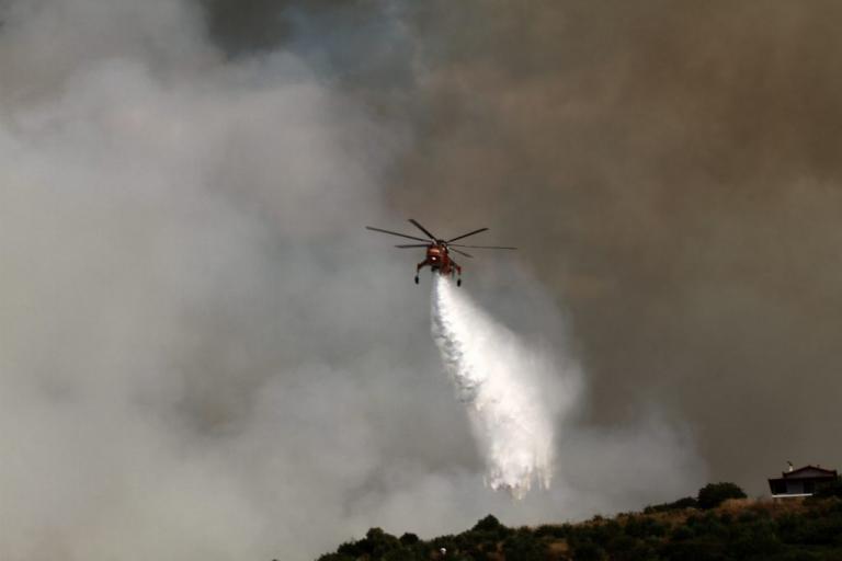 Πρέσπες: Έπιασαν επ' αυτοφώρω εμπρηστή – Έβαλε 3 φωτιές και κρύφτηκε με τον αναπτήρα στα χέρια!
