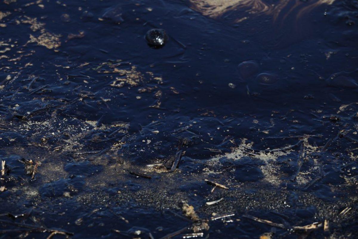 Πετρελαιοκηλίδα: Ξεκίνησαν οι διαδικασίες για τις αποζημιώσεις